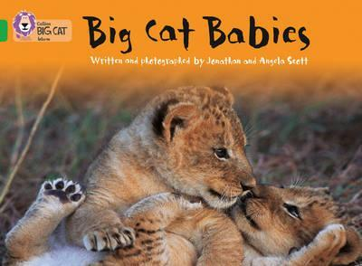 Big Cat Babies - Jonathan Scott