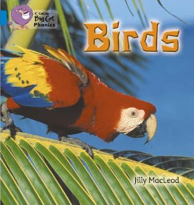 Birds: Band 04/Blue (Collins Big Cat Phonics) - Jilly McLeod