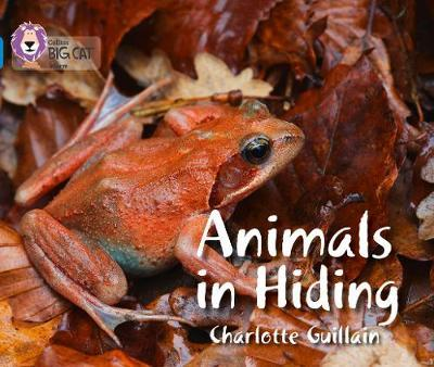 Animals in Hiding - Charlotte Guillain