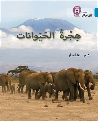Animal Migration: Level 13 (Collins Big Cat Arabic Reading Programme) - Deborah Chancellor