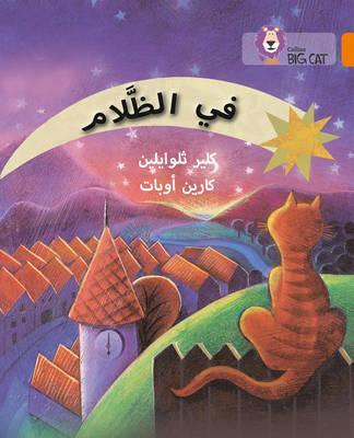In the Dark: Level 6 (Collins Big Cat Arabic Reading Programme) - Claire Llewellyn