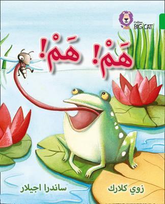 Hum Hum: Level 5 (Collins Big Cat Arabic Reading Programme) - Zoe Clarke