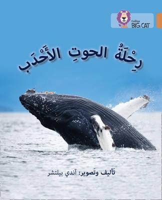 Journey of Humpback Whales: Level 12 (Collins Big Cat Arabic Reading Programme) - Andy Belcher