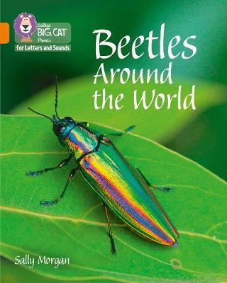 Collins Big Cat Phonics for Letters and Sounds - Beetles Around the World: Band 6/Orange - Collins Big Cat