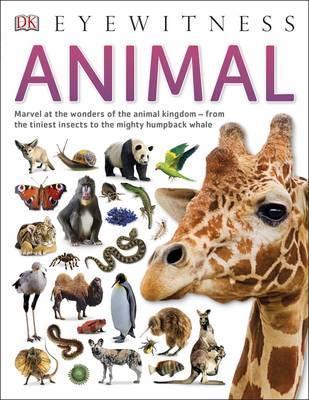 Animal - DK