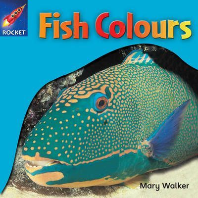 Fish Colours - Mary Walker