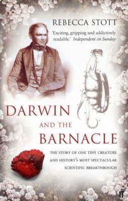 Darwin and the Barnacle - Rebecca Stott