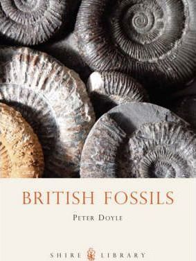 British Fossils - Peter Doyle