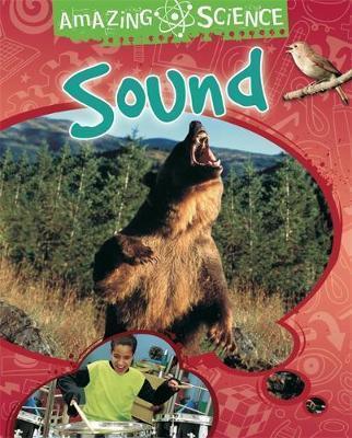 Amazing Science: Sound - Sally Hewitt
