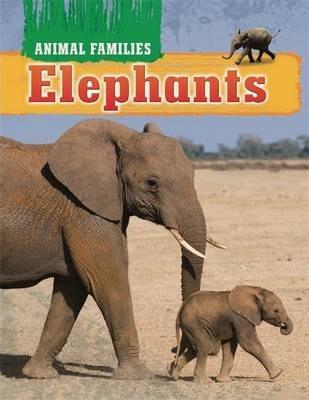Animal Families: Elephants - Hachette Children's Books