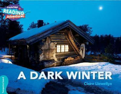 A Dark Winter - Claire Llewellyn