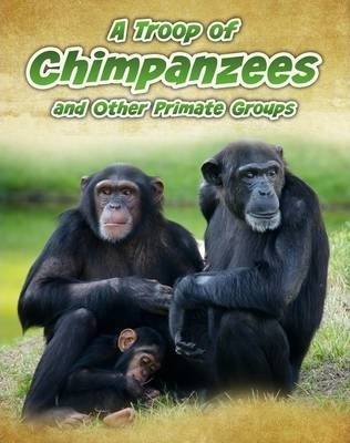 A Troop of Chimpanzees: and Other Primate Groups - Richard Spilsbury