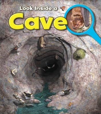 Cave - Richard Spilsbury