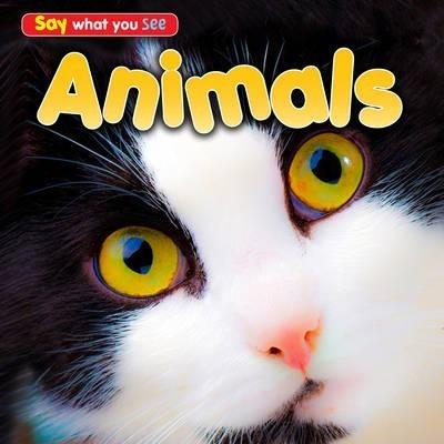 Animals - Rebecca Rissman