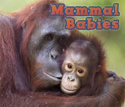 Mammal Babies - Catherine Veitch