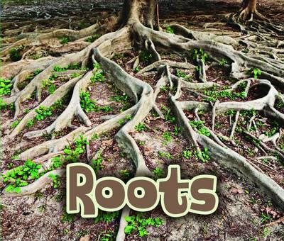 All About Roots - Claire Throp