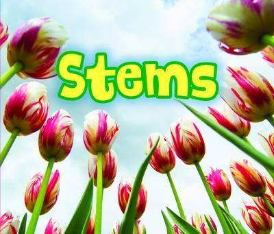 All About Stems - Claire Throp