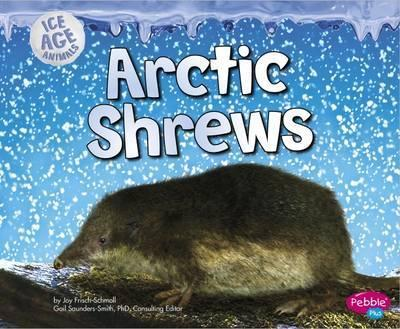 Arctic Shrews - Joy Frisch-Schmoll