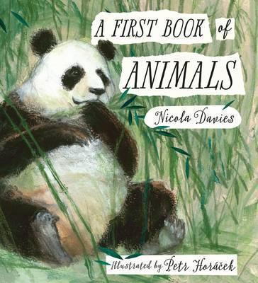 A First Book of Animals - Nicola Davies