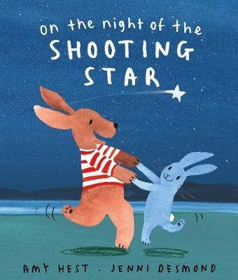 On the Night of the Shooting Star - Amy Hest
