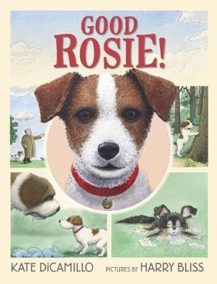 Good Rosie! - Kate DiCamillo