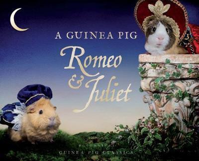A Guinea Pig Romeo & Juliet - William Shakespeare