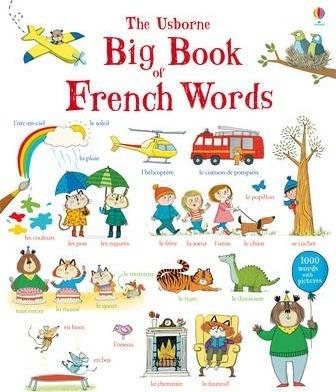 Big Book of French Words - Mairi Mackinnon
