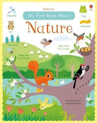 My First Book About Nature - Felicity Brooks