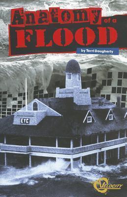 Anatomy of a Flood - Terri Dougherty