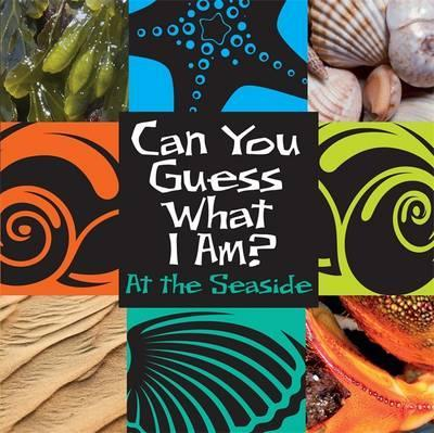 Can You Guess What I Am?: At the Seaside - J. P. Percy