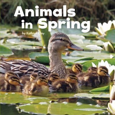 Animals in Spring - Mira Vonne