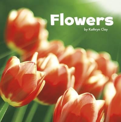 Flowers - Mira Vonne