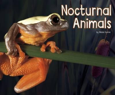 Nocturnal Animals - Abbie Dunne