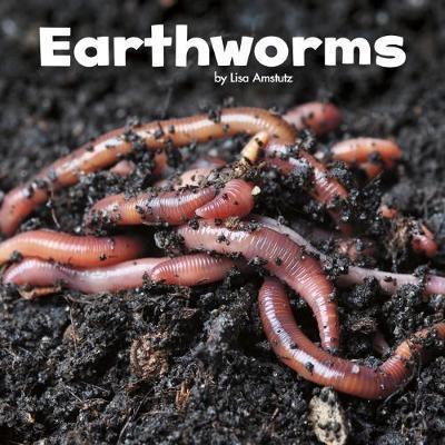 Earthworms - Lisa J. Amstutz
