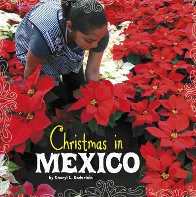 Christmas in Mexico - Cheryl L. Enderlein
