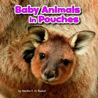 Baby Animals in Pouches - Martha E. H. Rustad