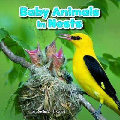 Baby Animals in Nests - Martha E. H. Rustad