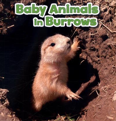 Baby Animals in Burrows - Martha E. H. Rustad