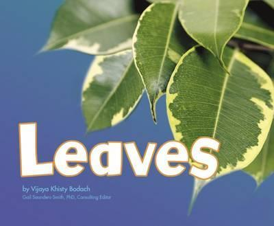 Leaves - Vijaya Khisty Bodach