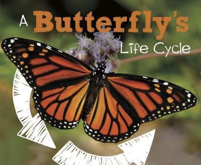A Butterfly's Life Cycle - Mary R. Dunn