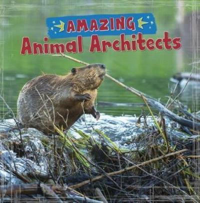 Amazing Animal Architects - Rebecca Rissman