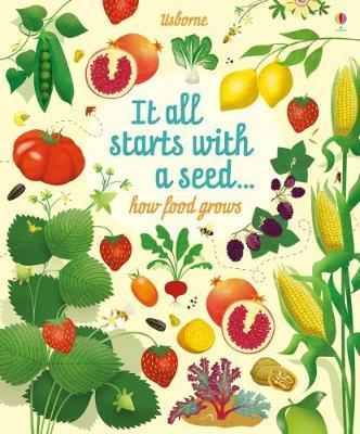 Big Picture Book How Food Grows - Emily Bone