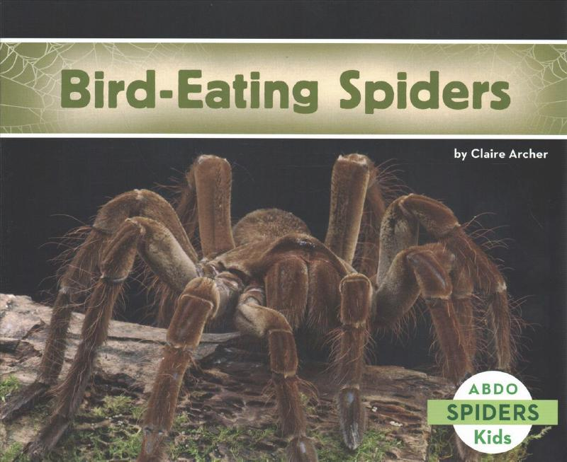 Bird-Eating Spiders - Claire Archer
