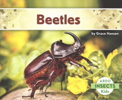 Beetles - Grace Hansen