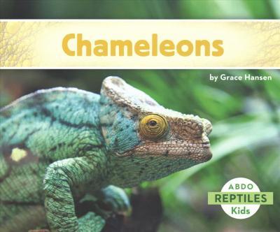 Chameleons - Grace Hansen