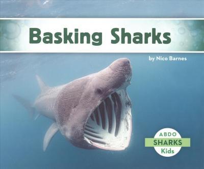 Basking Sharks - Nico Barnes