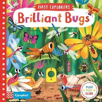 Brilliant Bugs - Chorkung