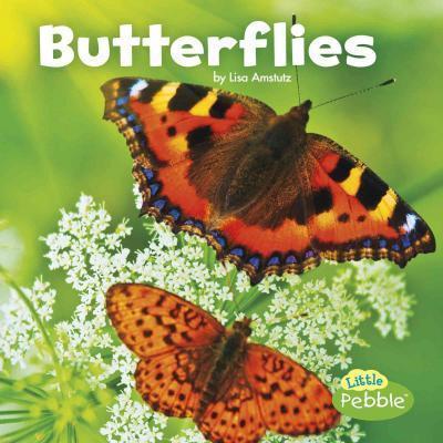 Butterflies - Lisa J Amstutz