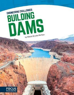 Building Dams - Nikole Brooks Bethea