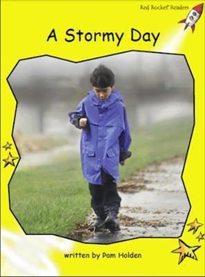 A Stormy Day - Pam Holden